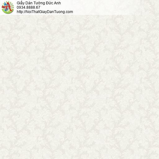 Giấy dán tường IMPERIAL 81007-5