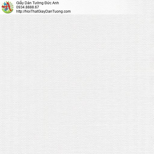 Giấy dán tường màu trắng | Giấy dán tường quận Bình Tân|Sketch 15064-1