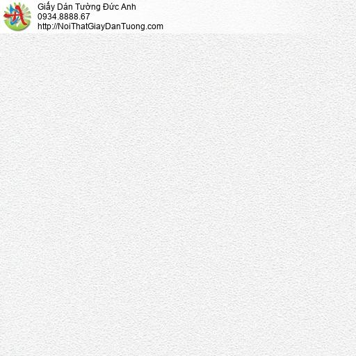 Giấy dán tường màu kem, dán tường huyện Bình Chánh | SKETCH 15067-1