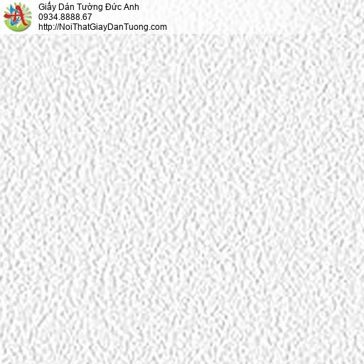 5536-1 Giấy dán tường dạng gân màu trắng, giấy gân trơn đơn giản