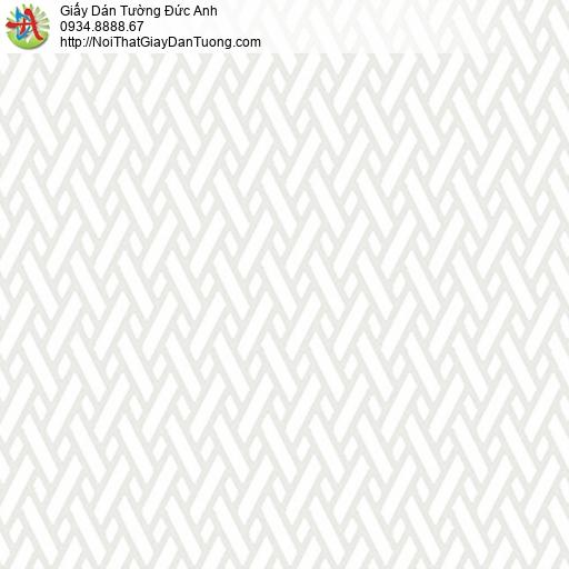 5542-7 Giấy dán tường họa tiết hai đường song song đan xéo màu trắng