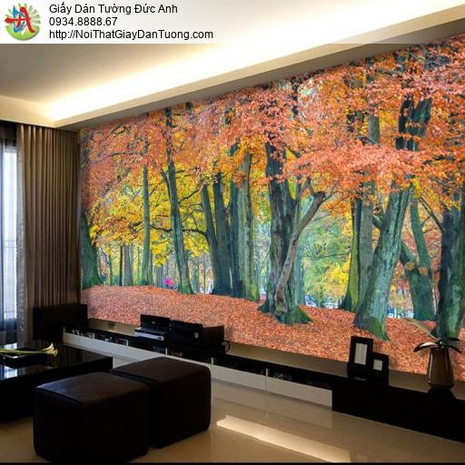1412 Tranh dán tường cây lớn cổ thụ màu vàng, tranh dán tường mùa thu
