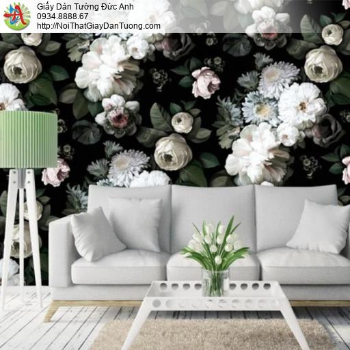 3314 - tranh dán tường hoa trắng, bức trường bông hoa trắng nền tối