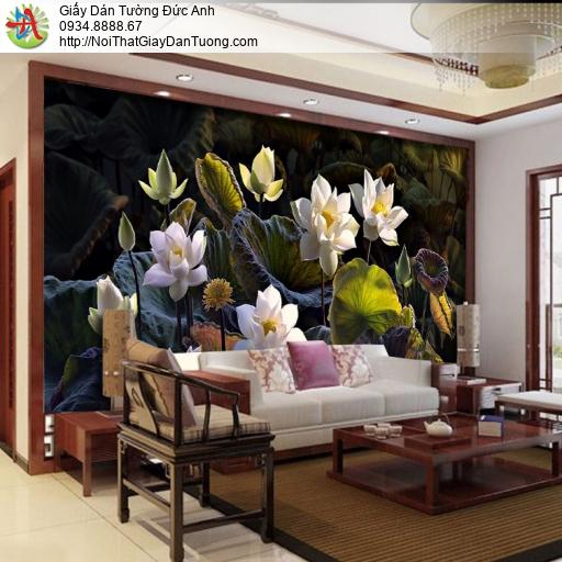 3315 - Tranh dán tường hoa sen, hoa sen 3D, hoa sen trắng đẹp