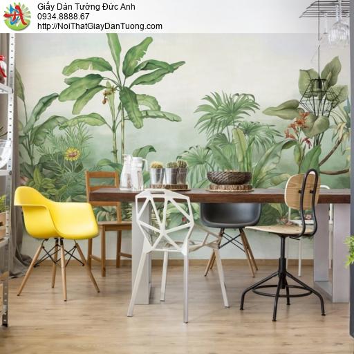 1415- Tranh dán tường rừng nhiệt đới, cây chuối và một số cây xương xỉ