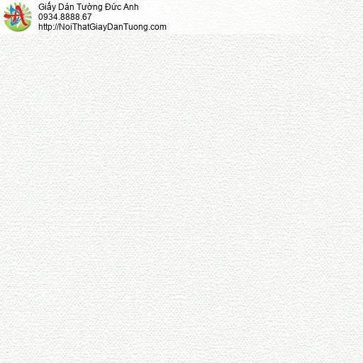 70194-1 - Giấy dán tường trơn màu trắng hiện đại, dán tường Bình Chánh