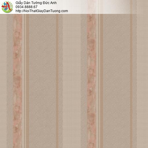 81243 Giấy dán tường dạng sọc màu nâu,giấy sọc to, sọc lớn màu cam nâu