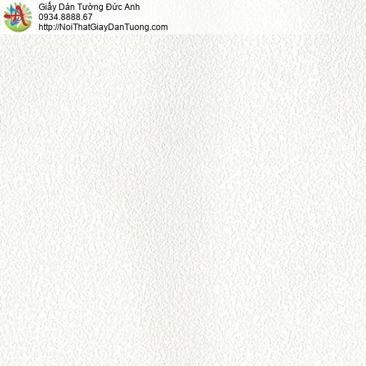 3532-2 Giấy dán tường gân màu trắng tinh, trắng sáng không không có kim tuyến