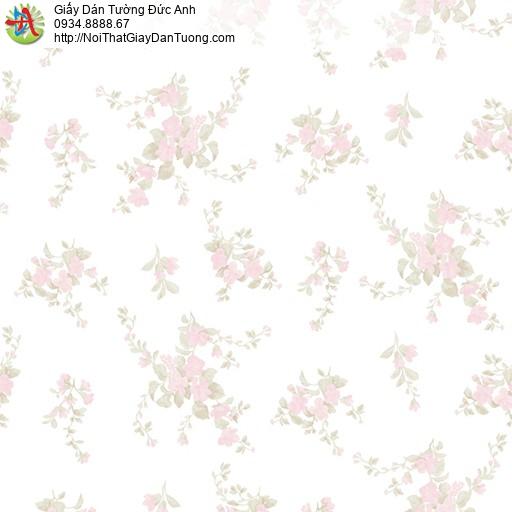 MG2051 Giấy dán tường những chùm bông hoa màu hồng đẹp, giấy dán tường hoa nhỏ