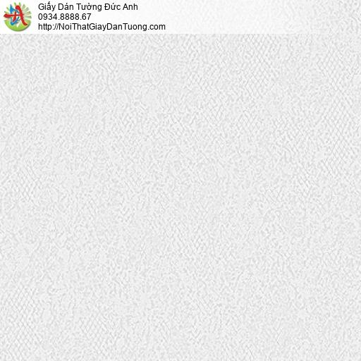 MG2105 Giấy dán tường dạng gân to màu xám tro, giấy gân lớn đơn giản hiện đại