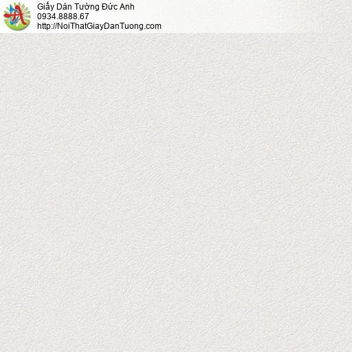 290516 Giấy dán tường cổ điển màu trắng