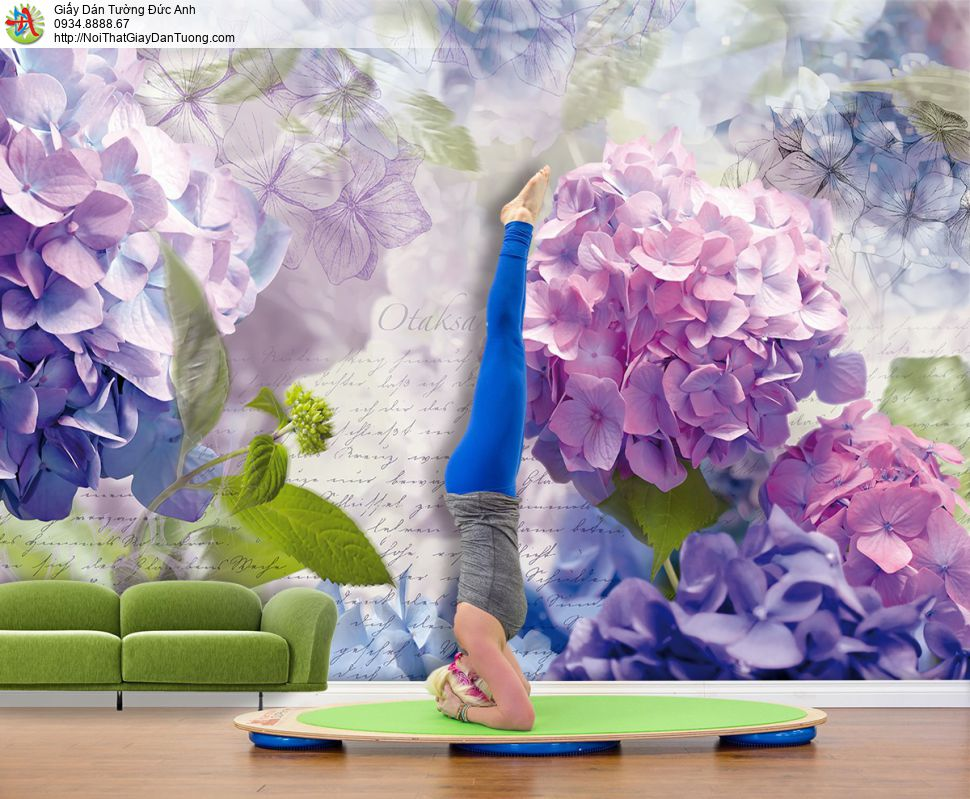 3321 - Tranh dán tường hoa cẩm tú cầu đẹp