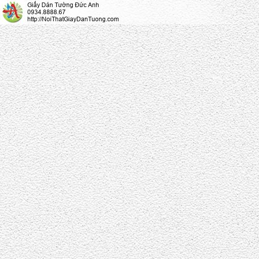 2071-1 Giấy dán tường gân nhỏ màu trắng xám, giấy trơn màu xám một màu hiện đại