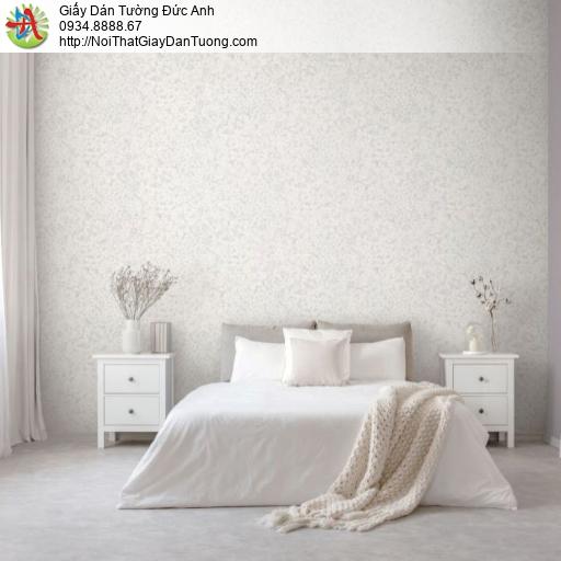2283-1 Giấy dán tường bông hoa màu trắng xám, bông 5-6 cánh như hoa mai hoa đào