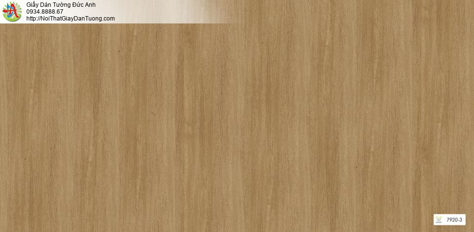 V concept 7920-3 | Giấy dán tường giả gỗ màu vàng